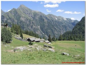 Read more about the article Valsesia – Val d'Otro 2009