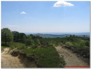 Read more about the article Vergante – Monte Falò (Le Tre Montagnette) 2010