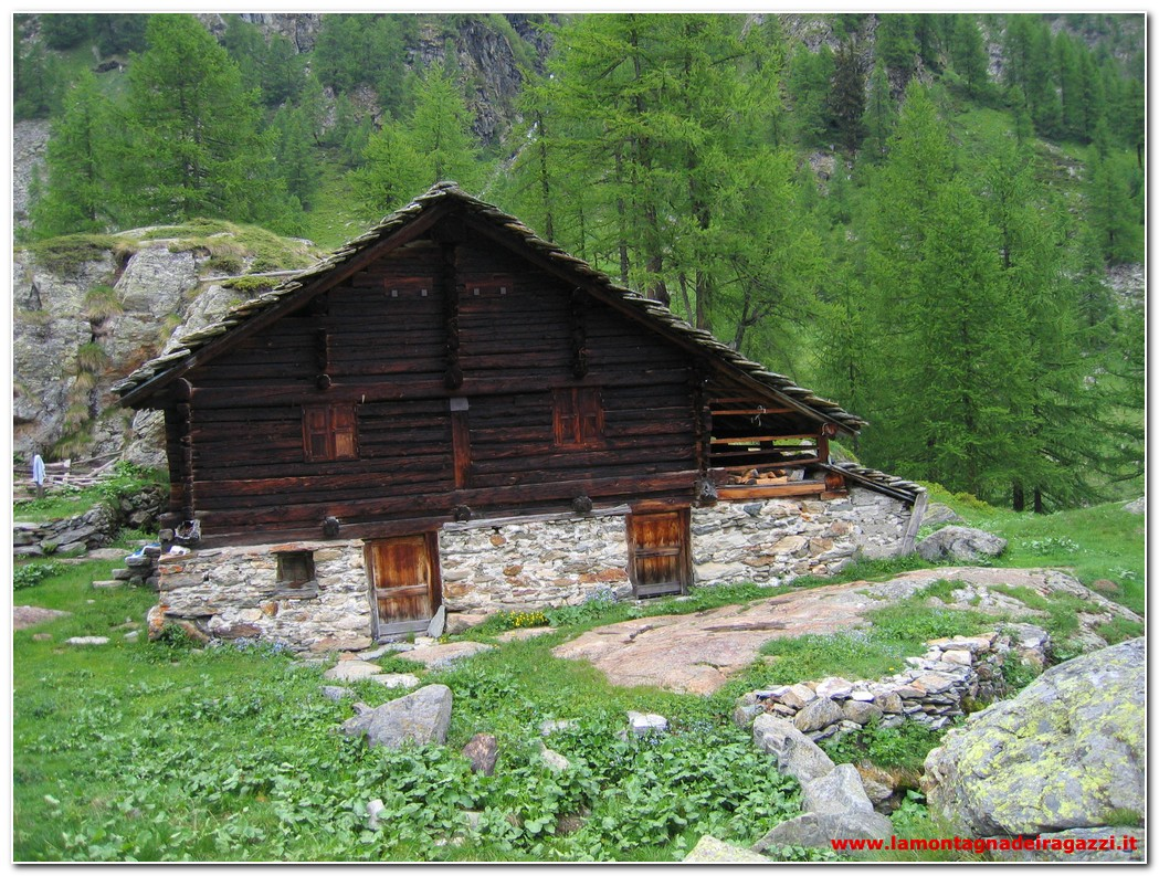 Read more about the article Valsesia – Alpe Larecchio