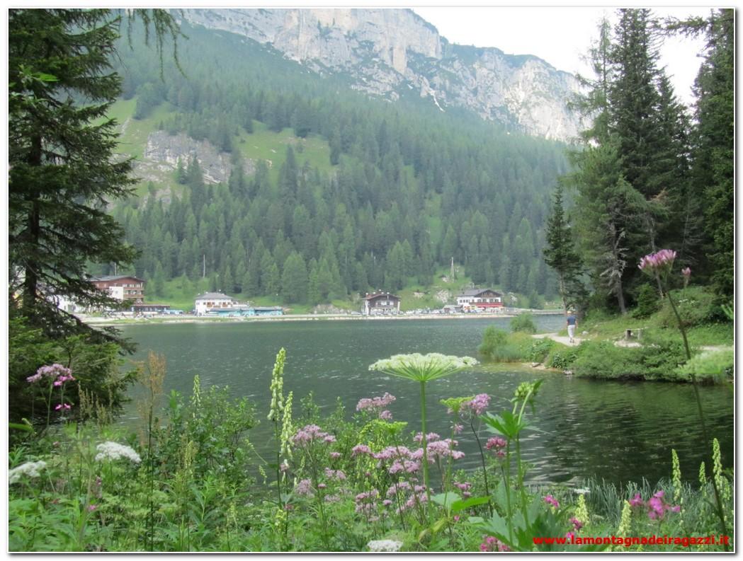 Dolomiti Bellunesi – Lago di Misurina