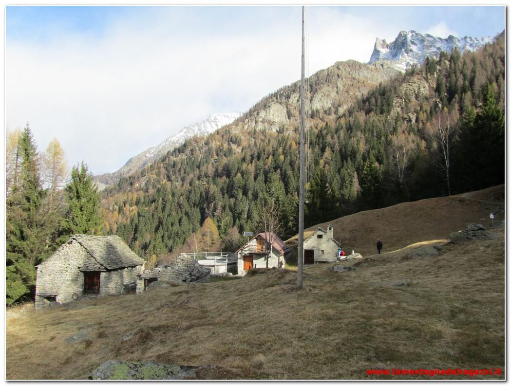 Read more about the article Valle Antogorio – Alpe Aleccio