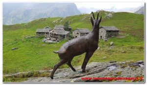 Read more about the article Valsesia – Alpe Campo