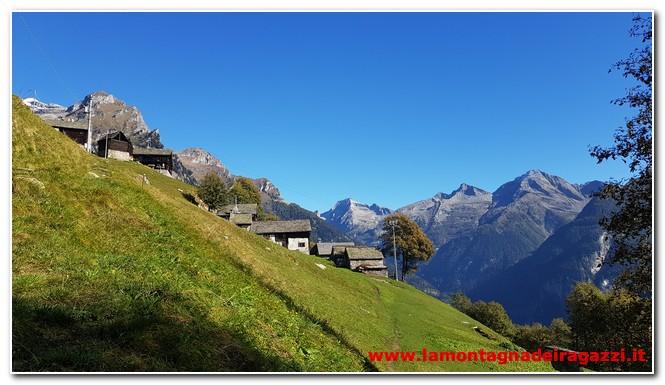 Read more about the article Anello Salecchio, Alpe Vova, Rivasco